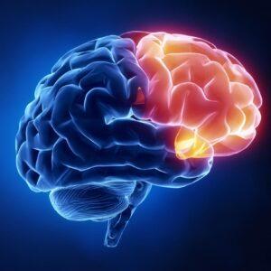Brain Explain: Psychopaths vs. Sociopaths