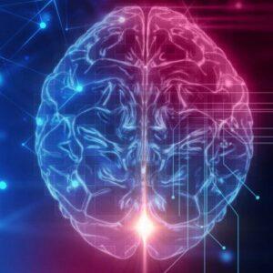 Brain Explain: The Truth Behind Lying