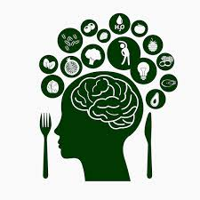 Brain and Obesity: an overview